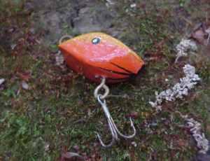 fishing_report